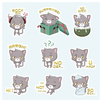Collection d'expressions chat