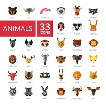 Collection d'icônes des animaux