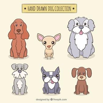 Collection de chiens dessinés à la main