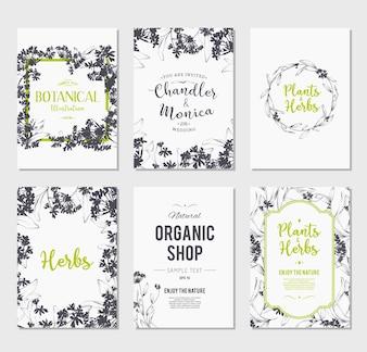 Collection de dépliants pour les magasins botaniques
