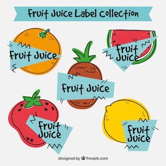 Collection de fruits tirés à la main