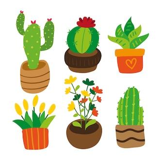 Collection de plantes colorées