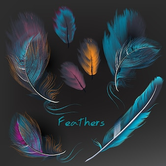 Collection de plumes multicolores