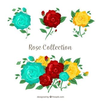 Collection de roses à trois couleurs