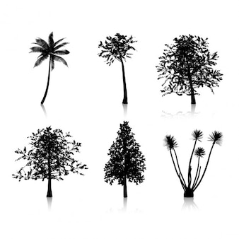 Collection de six silhouettes d'arbres différents