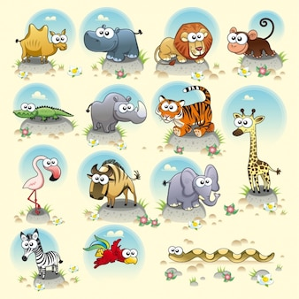 Collection Les animaux sauvages