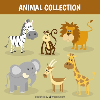 Collection Nice animal sauvage