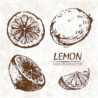Conception de citron tiré par la main