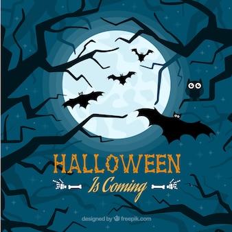 Contexte de Halloween avec des chauves-souris