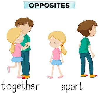 Des mots opposés pour ensemble et à part