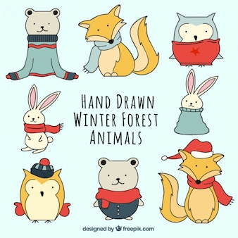 Dessiné ensemble des animaux à la main portant des vêtements d'hiver
