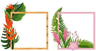 Deux cadres avec des fleurs et des feuilles
