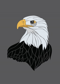 Eagle illustration vecteur coloré