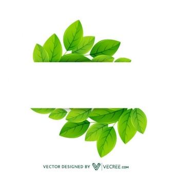 Eco Friendly Feuilles Étiquette