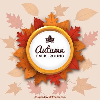 Élégant fond d'automne