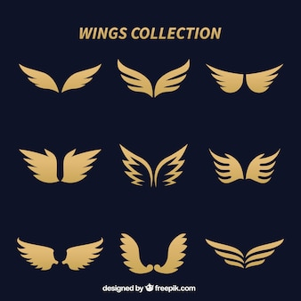 Élégantes ailes dorées