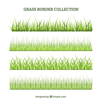 Ensemble de bordure d'herbe verte