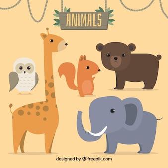 Ensemble de cinq animaux sauvages