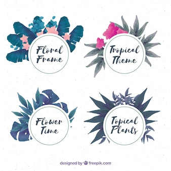 Ensemble de couronnes florales d'aquarelle