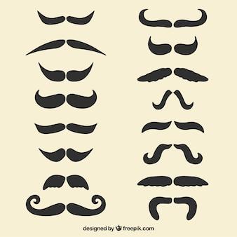 Ensemble de moustache décorative