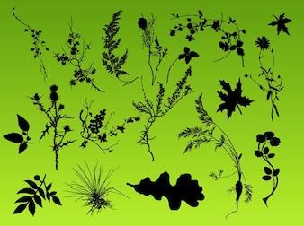 Ensemble de silhouettes de fleurs éléments de la nature