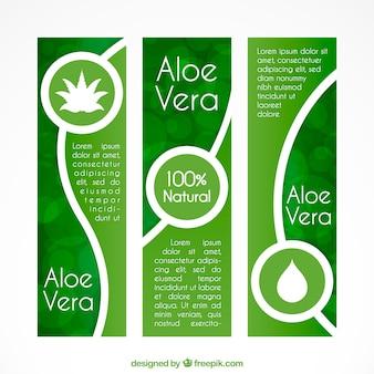 Ensemble de trois bannières Aloe vera