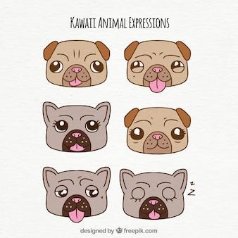 Ensemble de visages de chien drôles avec des expressions