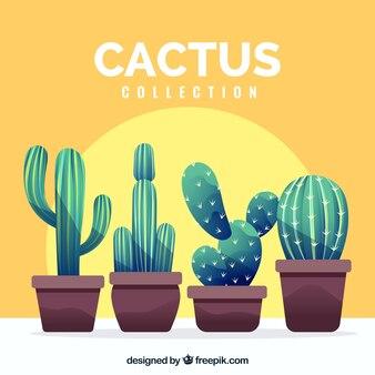 Ensemble moderne de cactus amusants
