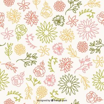 Esquisses couleurs de motif floral