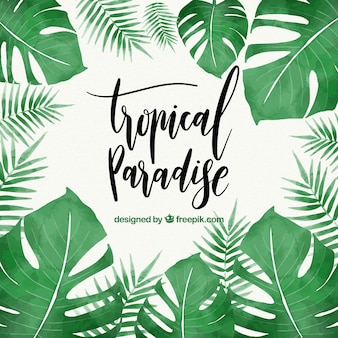 Feuilles tropicales