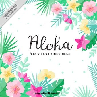 Flat tropical fleurs fond
