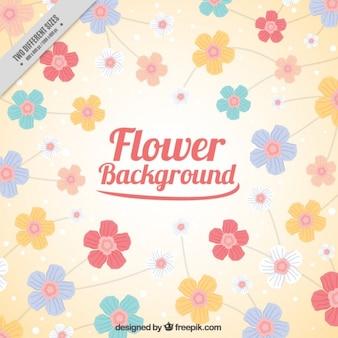 fleurs dessinés à la main fond