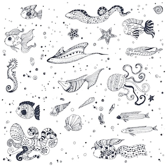 Fond d'écran des animaux marins