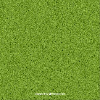Fond d'herbe verte