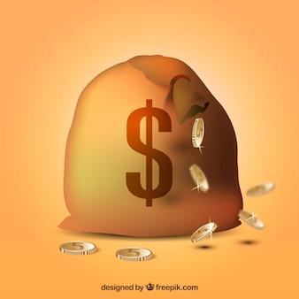 Fond d'un sac avec un symbole dollar et des pièces de monnaie