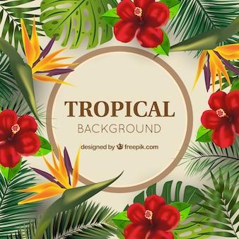Fond de fleurs tropicales réaliste avec cercle