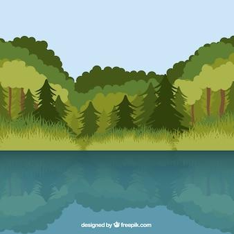 Fond de la forêt avec un lac