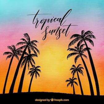Fond de paysage avec des palmiers au coucher du soleil