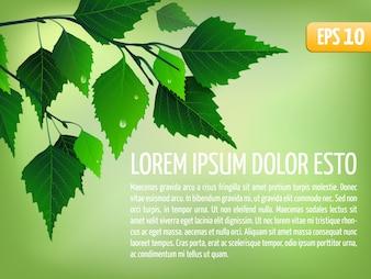 Fond de vecteur de printemps avec des feuilles. Modèle de carte floral élégant. eps10