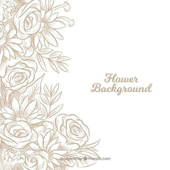Fond floral avec des roses dessinées à la main