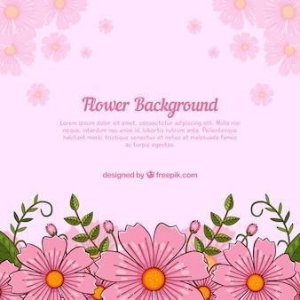 Fond floral rose