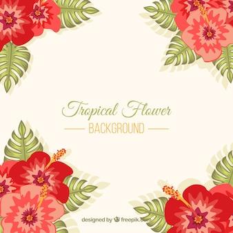 Fond rouge des fleurs tropicales