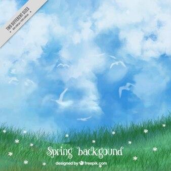 Grass background et joli ciel d'aquarelle