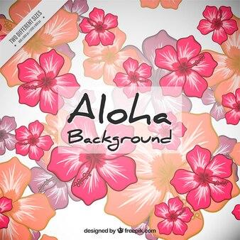 Hand drawn fleurs hawaïennes fond