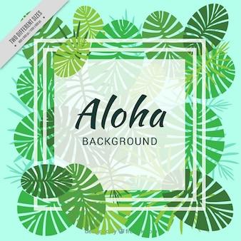Hawaiian fond avec des feuilles de palmier