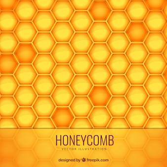Honeycomb fond