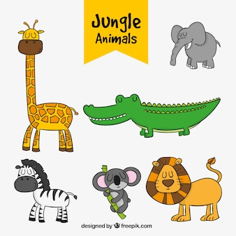 Jeu de animaux de la jungle dessinés à la main