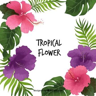 Joli fond de fleurs et de feuilles tropicales