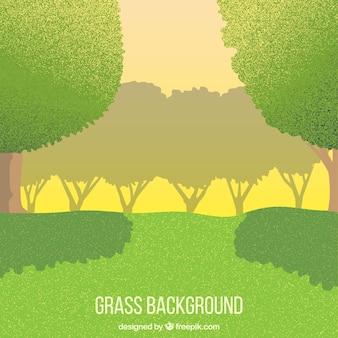 Joli paysage avec de l'herbe verte et des arbres
