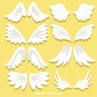 Jolies ailes dans un design plat